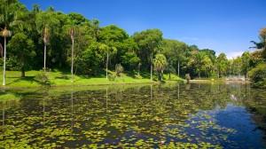 Jardim-Botanico-64514